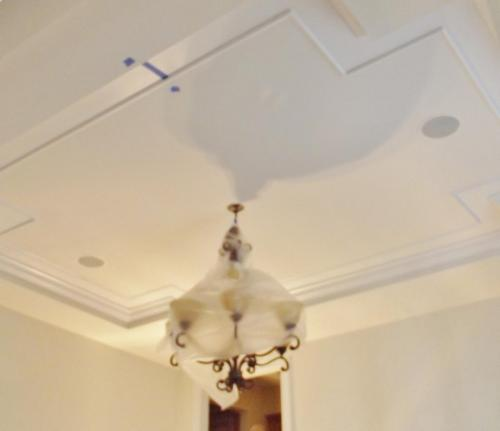 765 - APPLEBROOK TRAY CEILING BEFORE